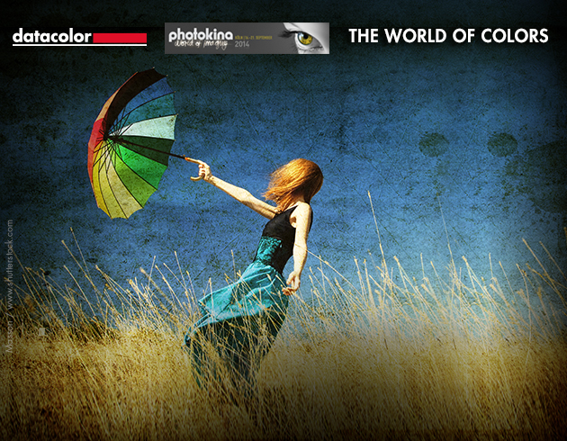 New Contest The world of colors